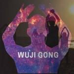Curs Tai Chi primordial (Wuji Gong) - Bucuresti, 24 iunie 2016