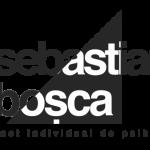 Bosca Sebastian – Psiholog / Psihoterapeut cognitiv-comportamental – Oradea