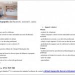 Cabinet de logopedie cauta logoped si voluntar (logoped) – Bucuresti (sector 1)