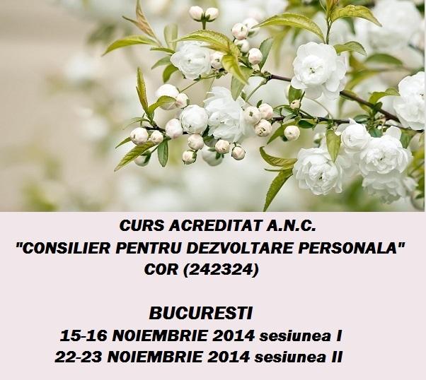 Curs autorizat (Centrul Metatron): Consilier pentru dezvoltare personala - din 15 noiembrie 2014, Bucuresti