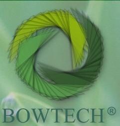 Grigorescu Alina – Terapeut Bowen Bowtech – Bucuresti