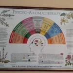 Vand postere profesionale pentru cabinet de terapii alternative