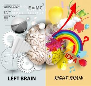 brain hemi 2
