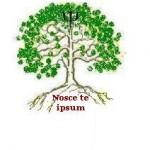 Cabinet inividual de psihologie Marius Pentilie – Cluj-Napoca