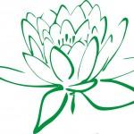 Dr. Rusu Dan Mihai – Medicina de familie | Homeopatie | Biorezonanta | Terapia Bowen Bowtech – Medias