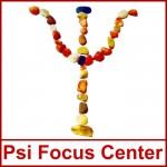 Curs autorizat de consilier pentru dezvoltare personala (Psi Focus Center) – Craiova