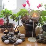 Centrul de Sanatate Medireflex – Medicina alternativa si terapii complementare – Bucuresti