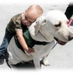 Rolul terapeutic al animalelor si terapia asistata de animale